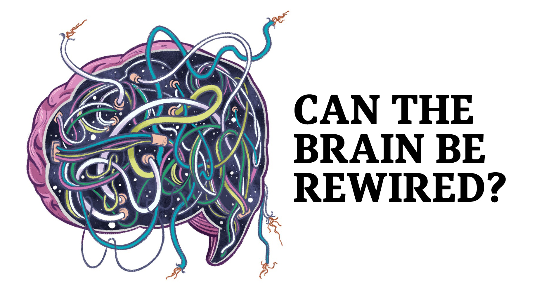 Deconstructing neuroplasticity: Can you rewire the human brain? - The Globe  and Mail