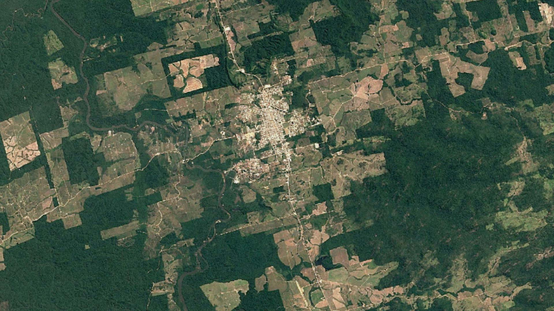 Highway of riches, road to ruin: Inside the Amazon\'s deforestation ...