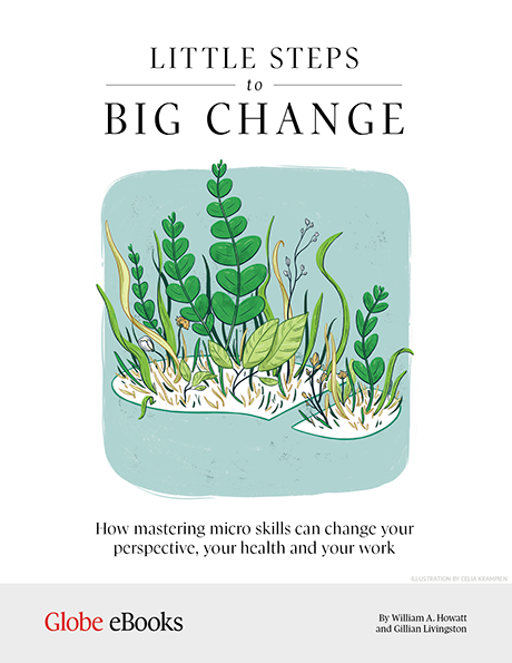 Micro skills - Little Steps to Big Change eBook