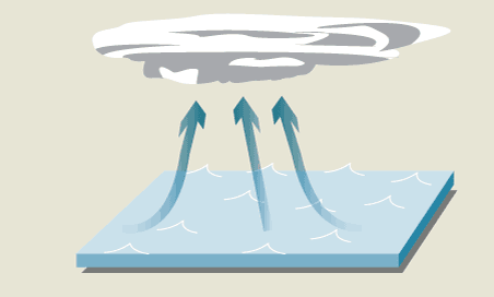 Explainer How Are Typhoons Formed The Globe And Mail