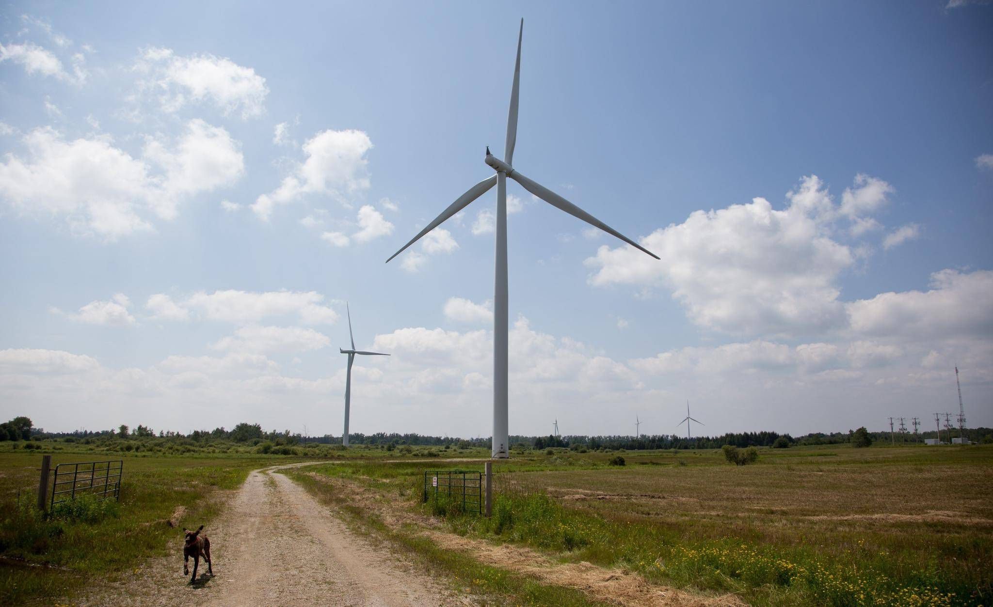 Canada faces $568-million NAFTA claim by Windstream Energy - The