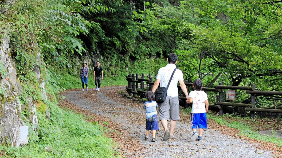 No one power walks on Forest Therapy Road in Okutama, Japan.