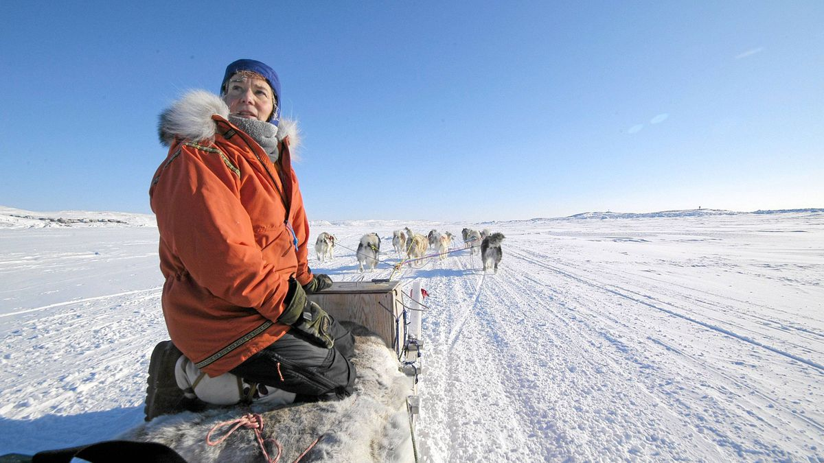 Matty McNair keeping an eye on her dogs and the students running them across southern Baffin Island.