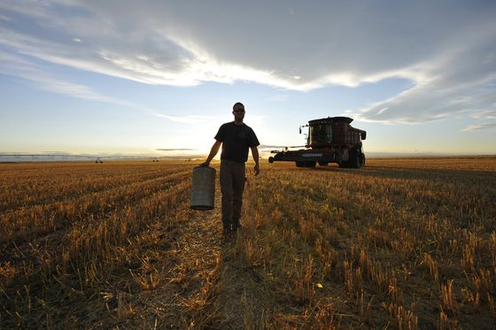 Alberta overhauls workplace rules for farms, small operations to be exempt