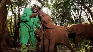 """Elephants and their keepers form strong bonds in the documentary """"Born to be Wild 3D."""""""