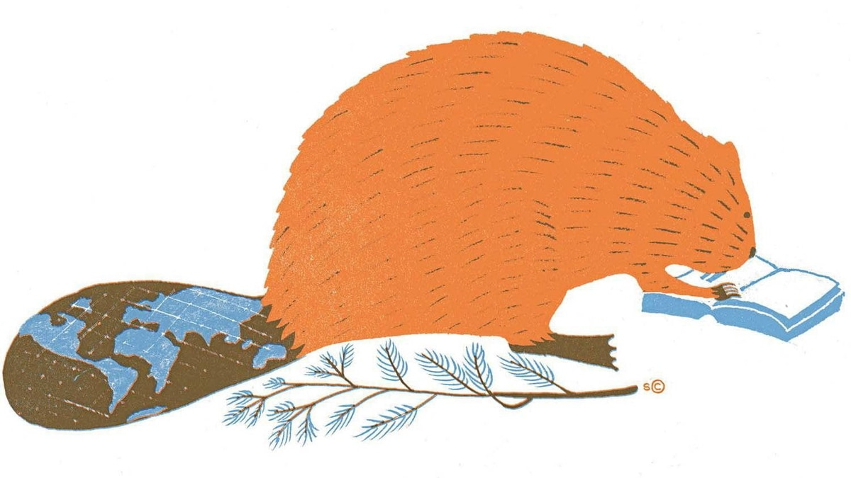 Illustration by Sophie Casson for The Globe and Mail