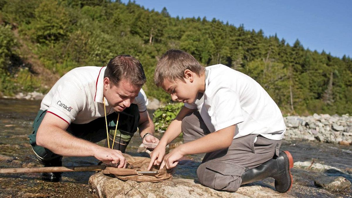 Fundy National Park's Dan Simard shows a visitor what lives in the Point Wolfe River, as part of the Looking at Water program.