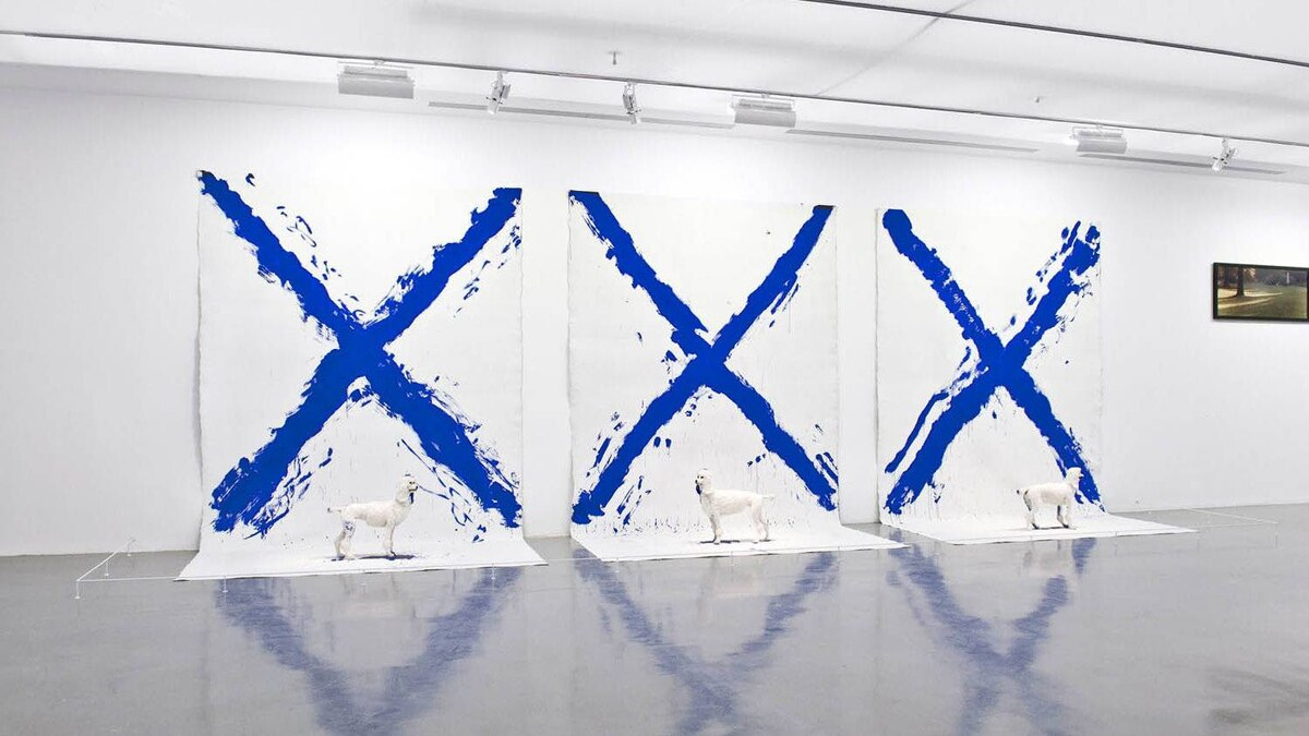 XXX (bleu) (installation view) 1984 3 acrylic on canvases, 3 poodles 350 x 940 x 150 cm. The Xes were painted by dipping the fake poodles in blue paint.