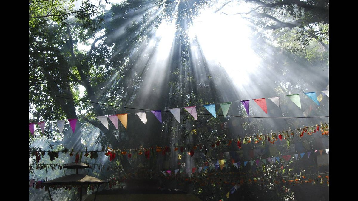 Joanne Furby photo: Prayer flags are inscribed with auspicious symbols, prayers and mantras and are seen across the sky throughout Nepal