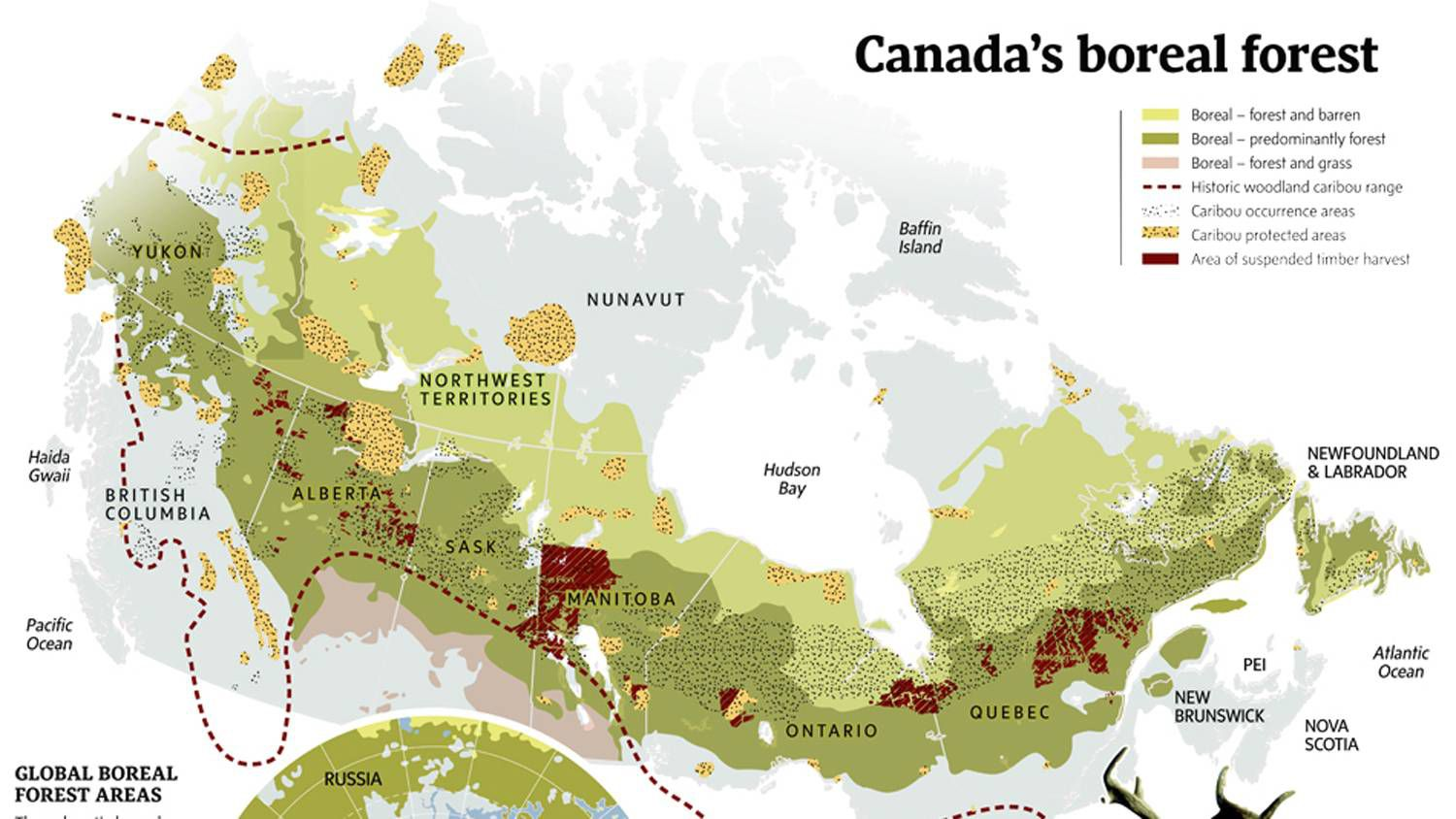 The Globe S Efforts To Protect The Boreal Forest The Globe And Mail
