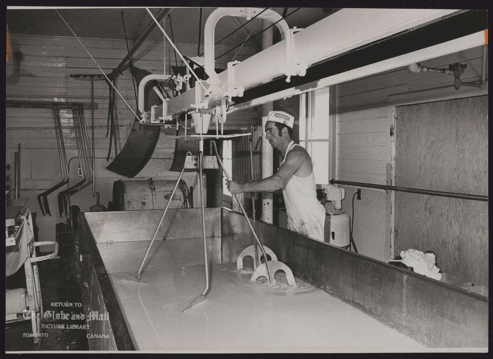 CHEESE (Ross Dean a plant employee cuts curds in plant at Plum Hollow)