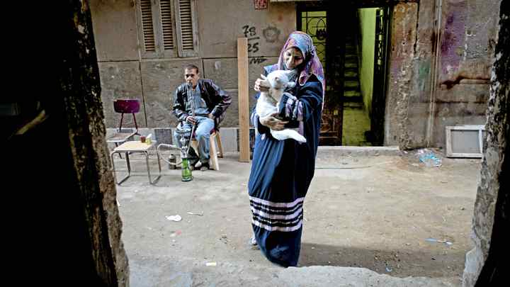 Mona, an Arabic teacher ,holds her white cat outside her shop in the Cairo suburb of ein Shams.