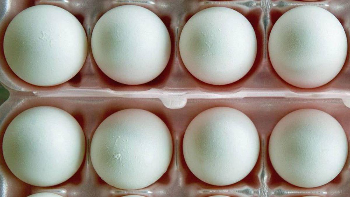 The sweeping egg recall is the largest in U.S. history.