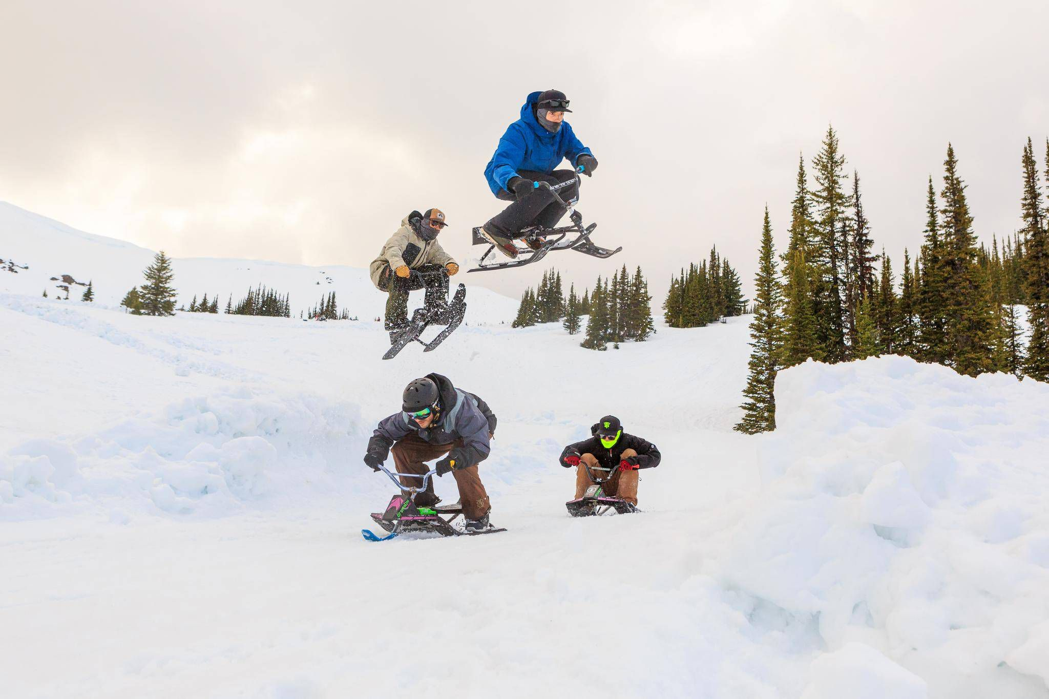 80daef7b5664 GT or Die  A toboggan race for grown-ups - The Globe and Mail