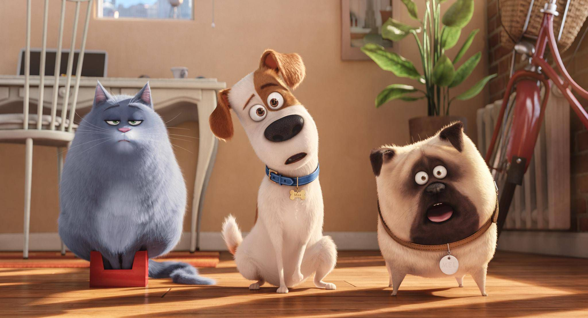 the secret life of pets an animated comedy sure to please kids