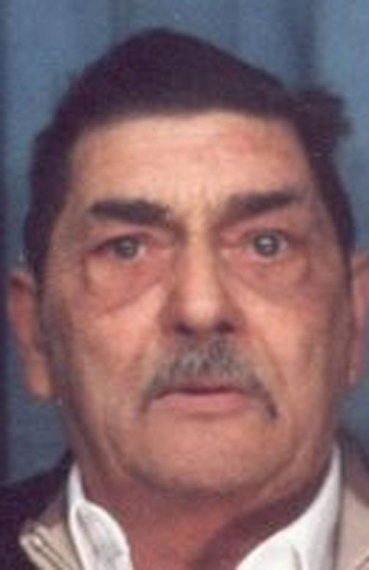 Ferenc Domotor Sr., 69, is kingpin Ferenc Domotor's father.