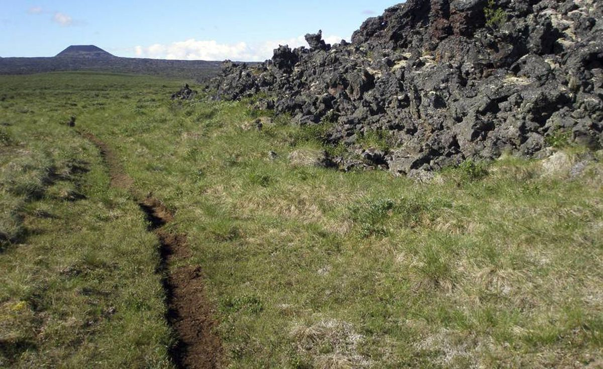 The trail carved into the grass was trekked by native people in search of obsidian thousands of years ago.