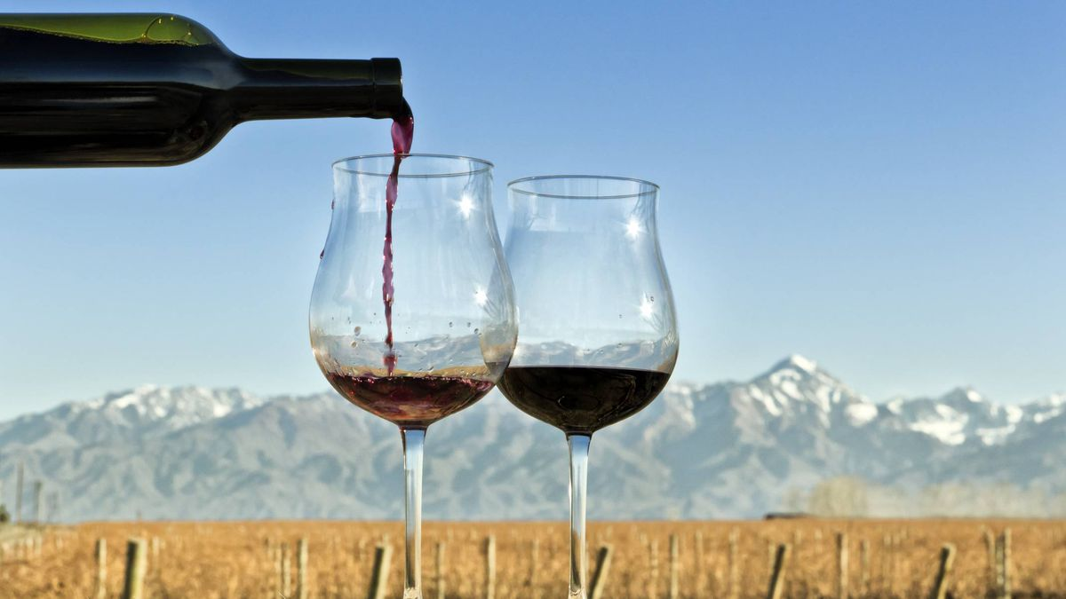 global international business tunisian wine But international wine critics are now giving favorable ratings to high-end offerings international business times was able to find only a couple of chinese.