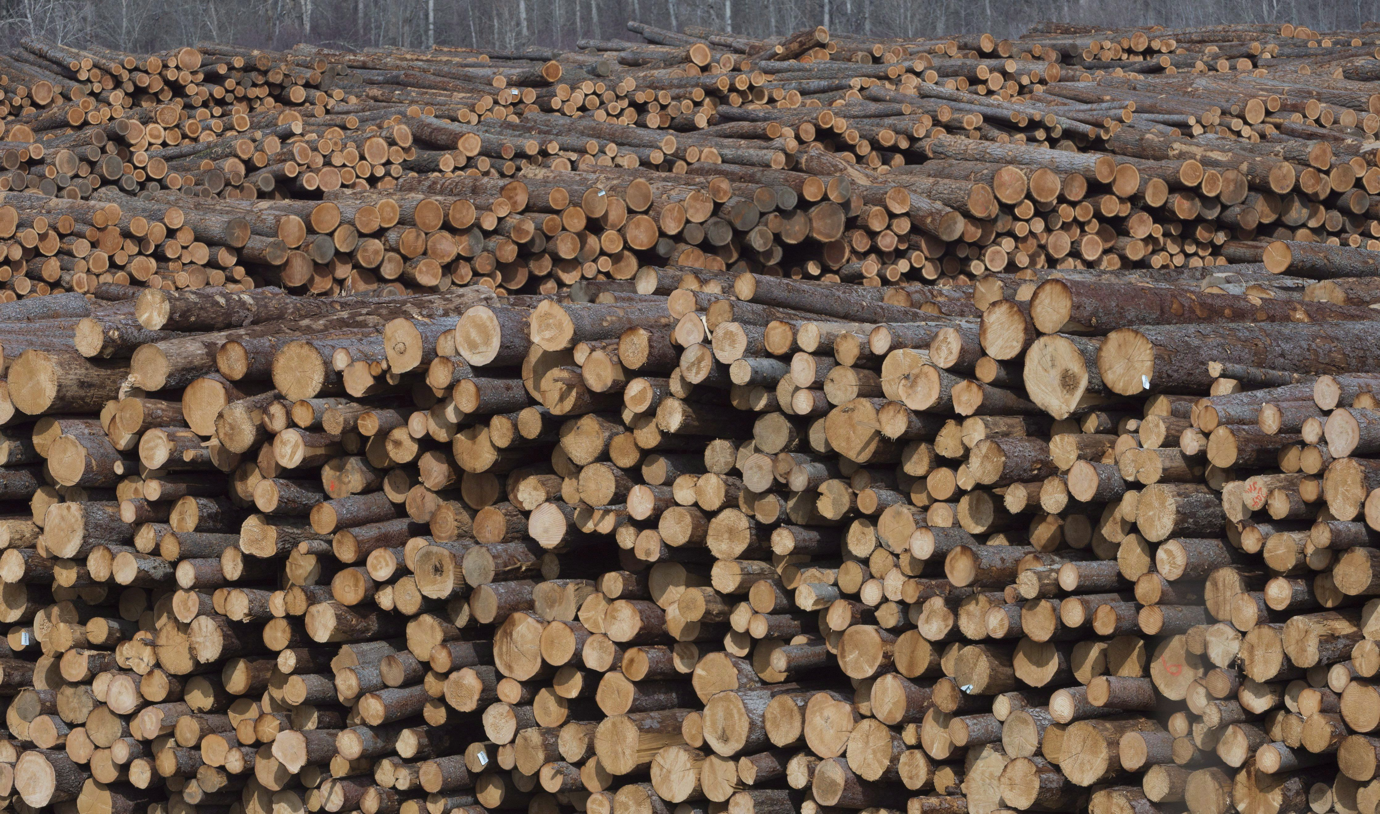 B.C. earmarks $69-million to help forestry industry deal with job cuts