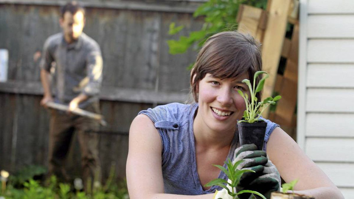 Julia Monkman plants sage as her boyfriend Alec prepares for a new flower bed behind her at home in Montreal, May 21, 2010.