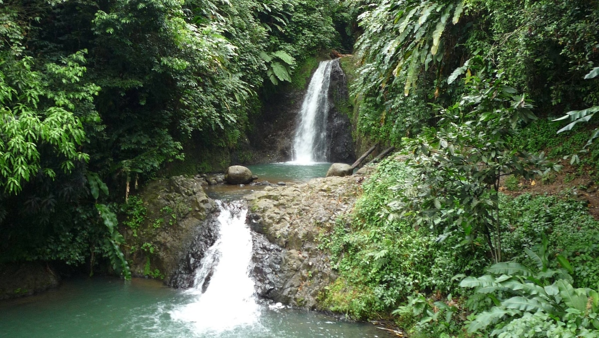 A popular activity in Grenada is a hike to the Seven Sisters waterfalls, which lie deep in the rain forest of Grand Etang National Park, a short drive from St. George's.