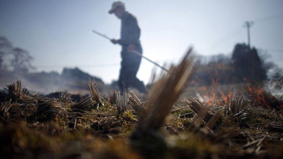 A man burns a rice field in preparation for planting near Fukushima, northern Japan April 5, 2011. The Japanese earthquake in March was just one of many global events that threw markets into a tailspin.