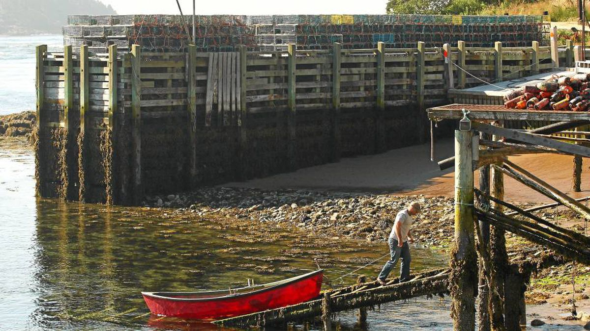 Fisherman Orlie Dixon pulls up a dory onto a wharf in Tiverton, N.S. , July 19, 2010. He works on a community support fishery which provides a higher price for his line fishery.