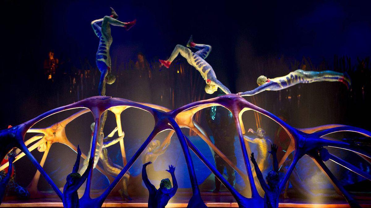 Number 5: Cirque de Soleil