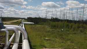 A Pengrowth Energy Corp. pipeline in Alberta.