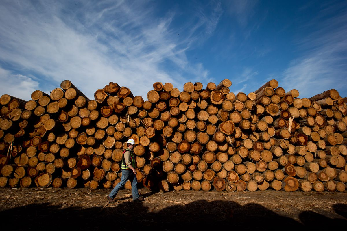 B.C. Inside sawmills reduce lumber output as customers delay residence renovations