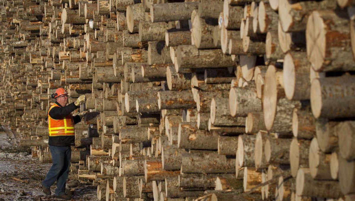 West Fraser Timber Co. Ltd. lumber mill in Quesnel, B.C.