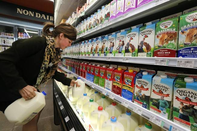 Wheat, meat, now milk – what's safe to eat in the 21st century?