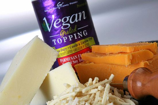 Vegan cheeses photographed in the studio at The Globe and Mail in Toronto, Ontario, Canada. From left to right, The Original SOYA Co Mozzarella, Daiya shredded style mozzarella, Vegan Grated Soy Topping, parmesan flavour, Galaxy Nutritional Foods Rice Cheddar style cheese.