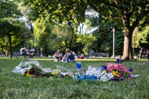 'Summer branch drop' may have caused death of man in Toronto park