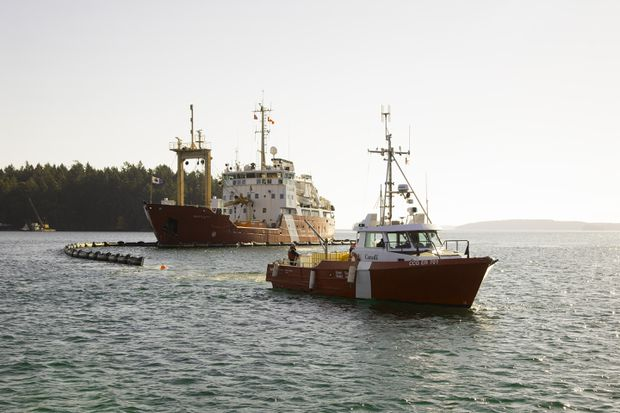 Trans Mountain pipeline delay means gaps in oil spill response