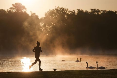 Researchers examine potential link between exercise and Alzheimer's prevention