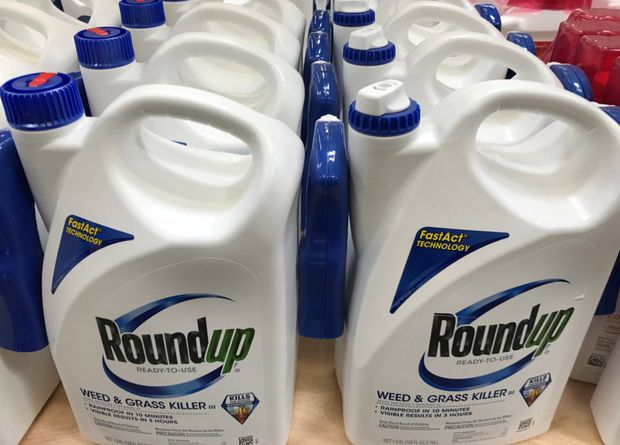 Judge slashes $2-billion award in Roundup lawsuit to $86.7-million