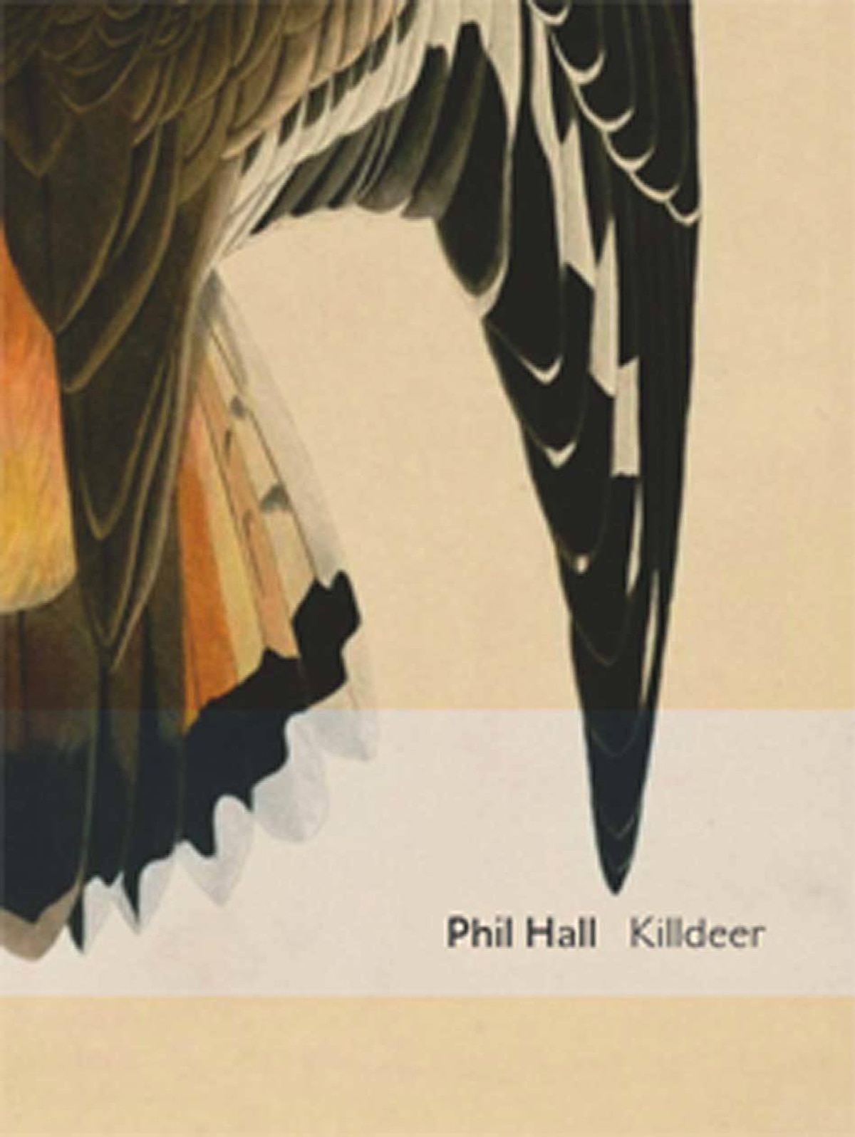 KILLDEER By Phil Hall (BookThug) Phil Hall's Governor-General's Award-winning Killdeer is a literary memoir in the form of a lyrical essay, which he rescues from its excesses and turns into something as adventurous as it is readable. Hall is one of the most inventive, and least pretentious, poets we have. If he's not a household name yet, he deserves to be. – Paul Vermeersch