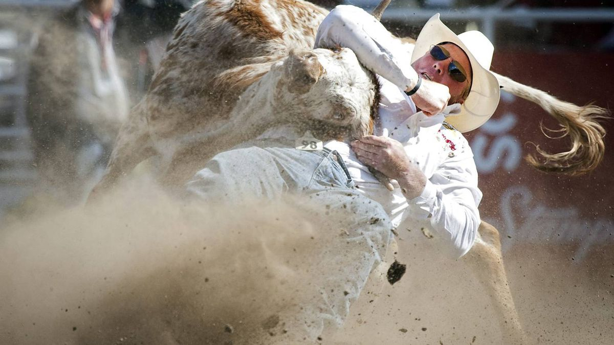Lee Graves, from Calgary, Alta., wins the steer wrestling rodeo event on the final day of the Calgary Stampede in Calgary, Sunday, July 18, 2010. The final day of Stampede rodeo is the richest single day in rodeo competition, giving out $1-million in prize money.THE CANADIAN PRESS/Jeff McIntosh