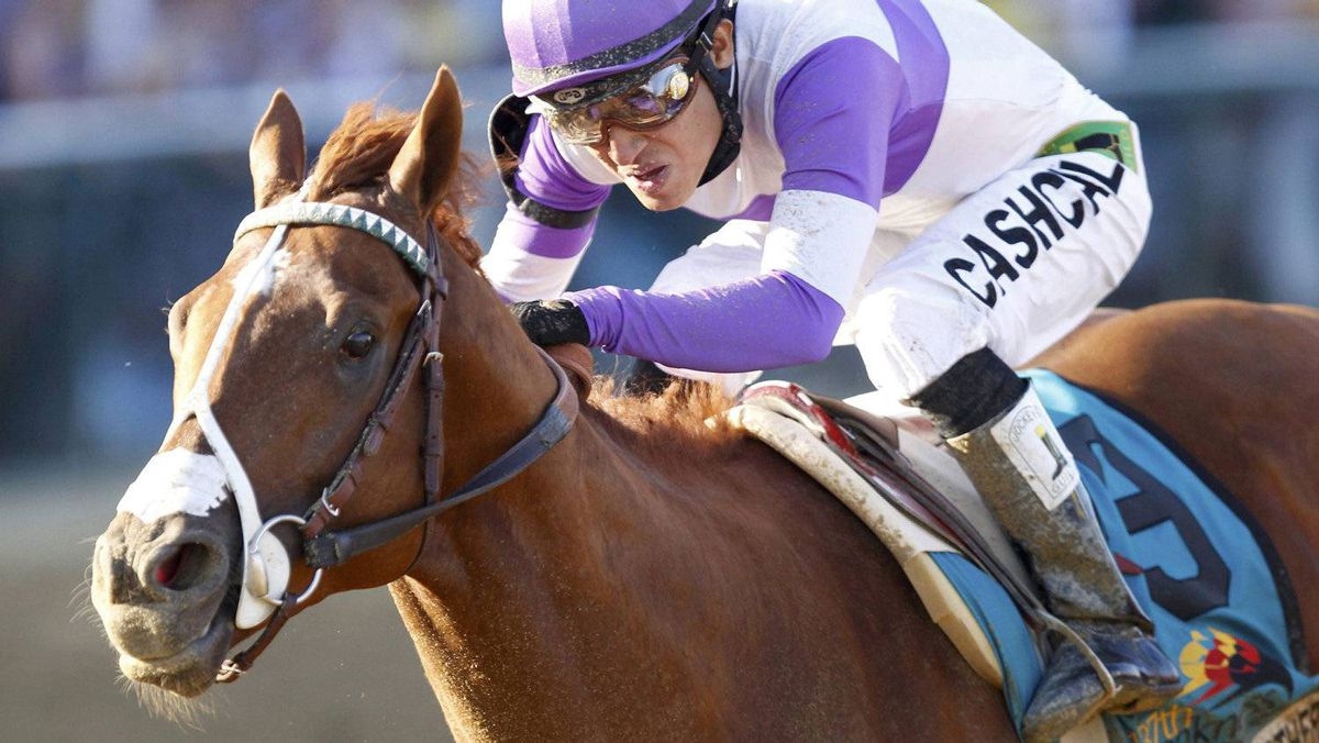 I'll Have Another with jockey Mario Guitierrez in the irons wins the 137th running of the Preakness Stakes at Pimlico Race Course in Baltimore, Maryland, May 19, 2012. REUTERS/Mike Segar