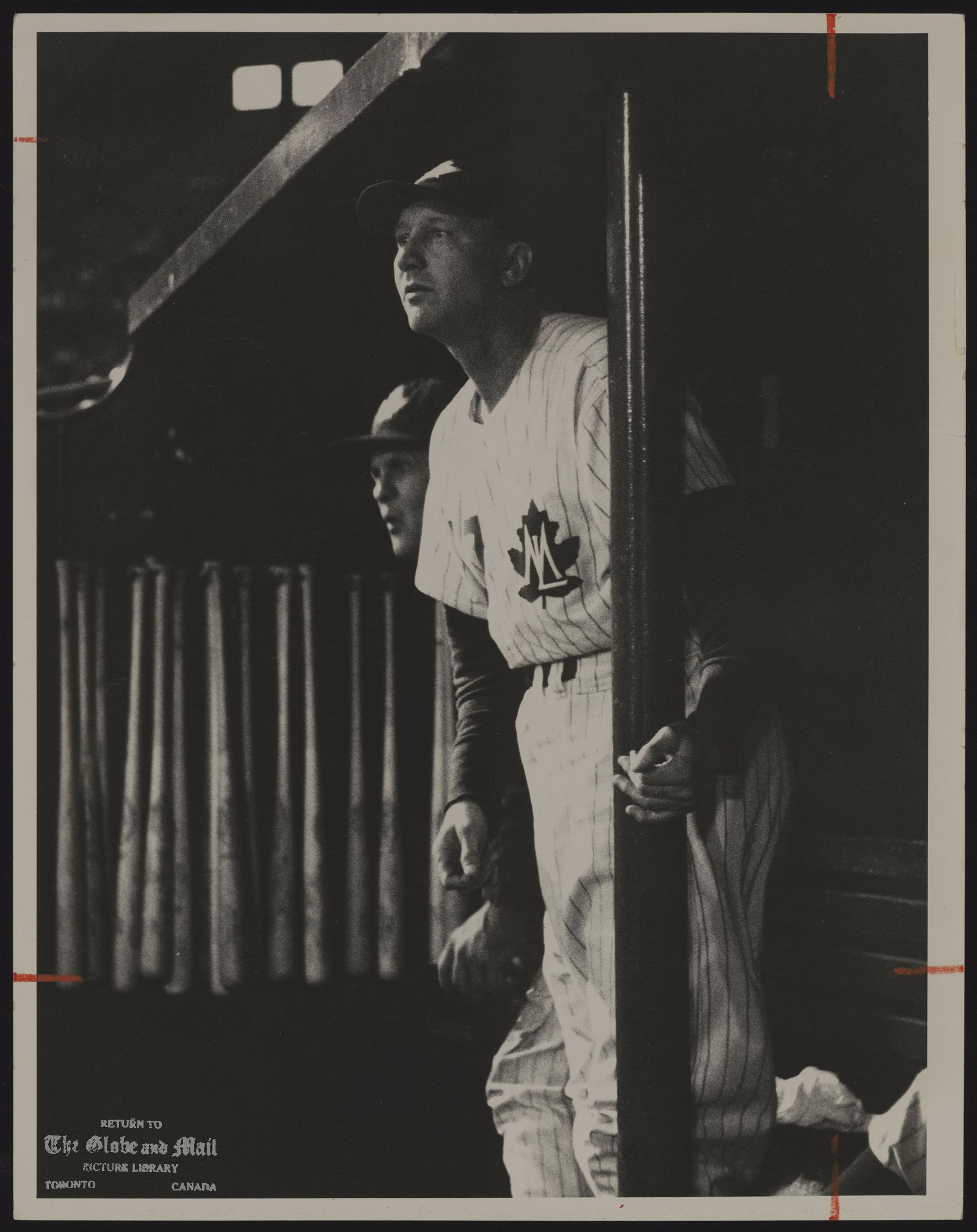 Dixie WALKER [Frederick D. Walker]. Baseball. From the dugout, Dixie Walker, Toronto Maple Leafs manager and sometime People's Choice of Brooklyn, watches deep drive to the right.