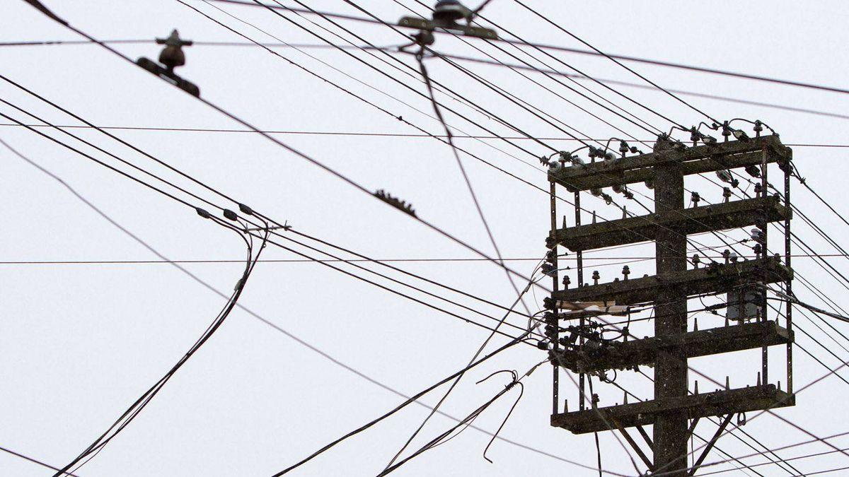 toronto hydro warns against power saving device scam