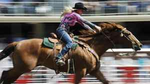 Angie Meadors of Blanchard, Oklahoma, races her horse in the barrel racing event during the Calgary Stampede rodeo.