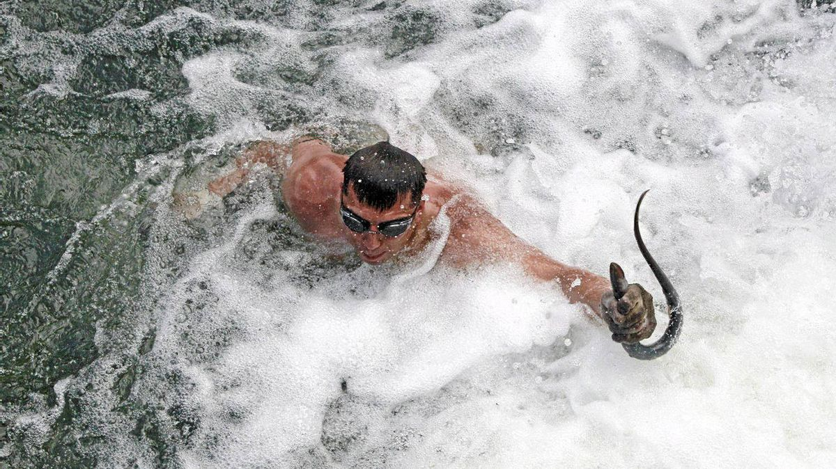 Jeremy Red Star Wolf, of the Umatilla Tribe, surfaces with a lamprey from the base of Willamette Falls.
