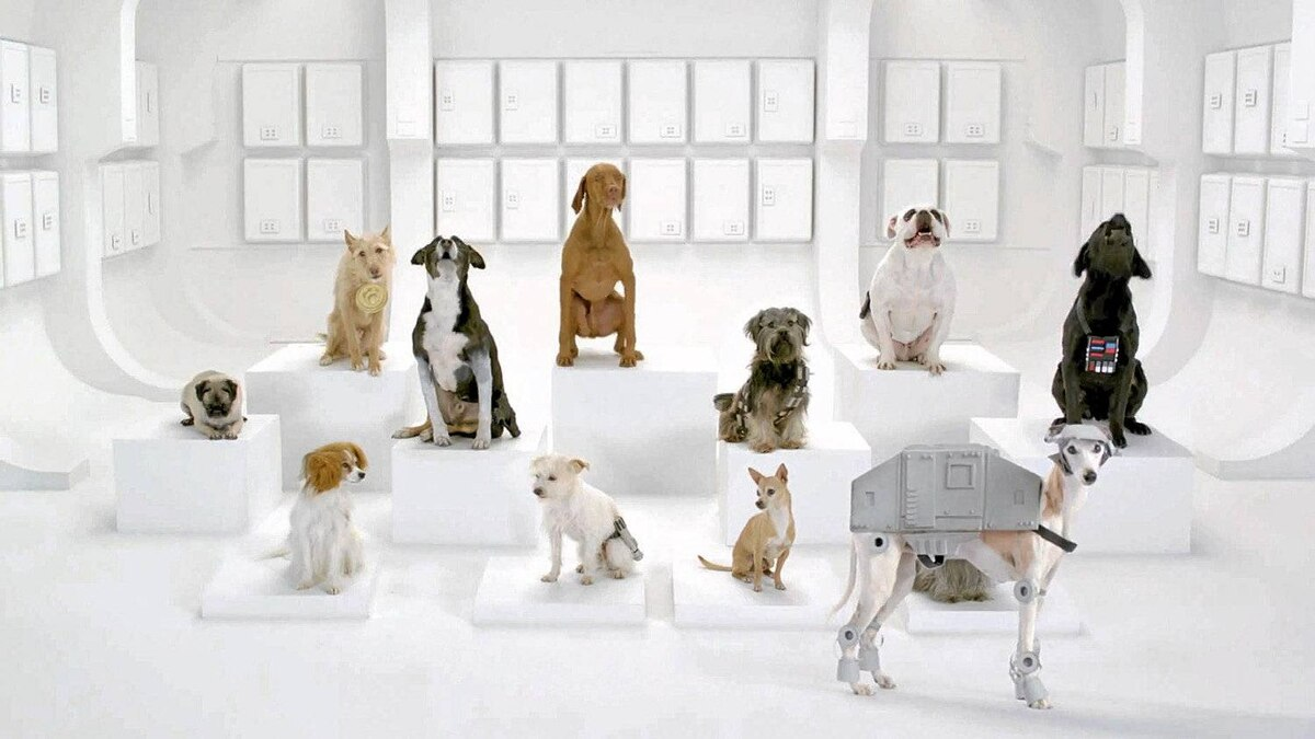 "Vollswagen's Super Bowl ad features a Star Wars-themed ""The Bark Side"" and competitors are pulling out the stops to ""draft"" it."