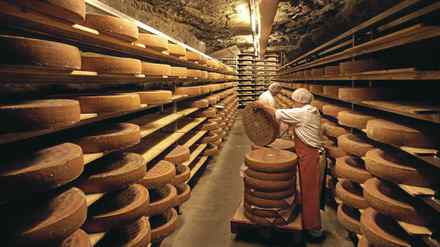 Cheesemakers brush Swiss cave-aged Gruyere cheese in a cave in Kaltbach, near Lucerne October 22, 2008.