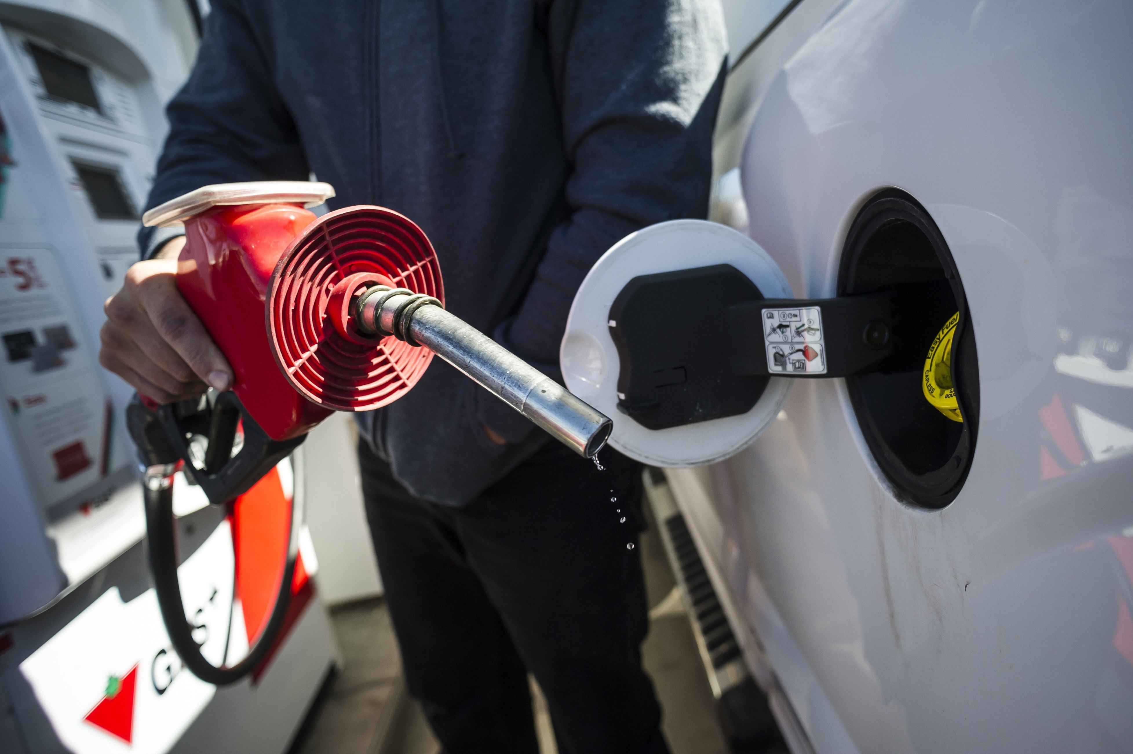 Experts see 'scare-mongering' in reports that federal carbon tax is a nightmare for small business
