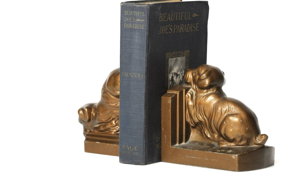 Dog bookends dating from the 1940s. Marlene Cook says she owns many vintage dog bookends to prop up the antiquarian books on dogs that she also owns, including this book that is part of the Beautiful Joe series.