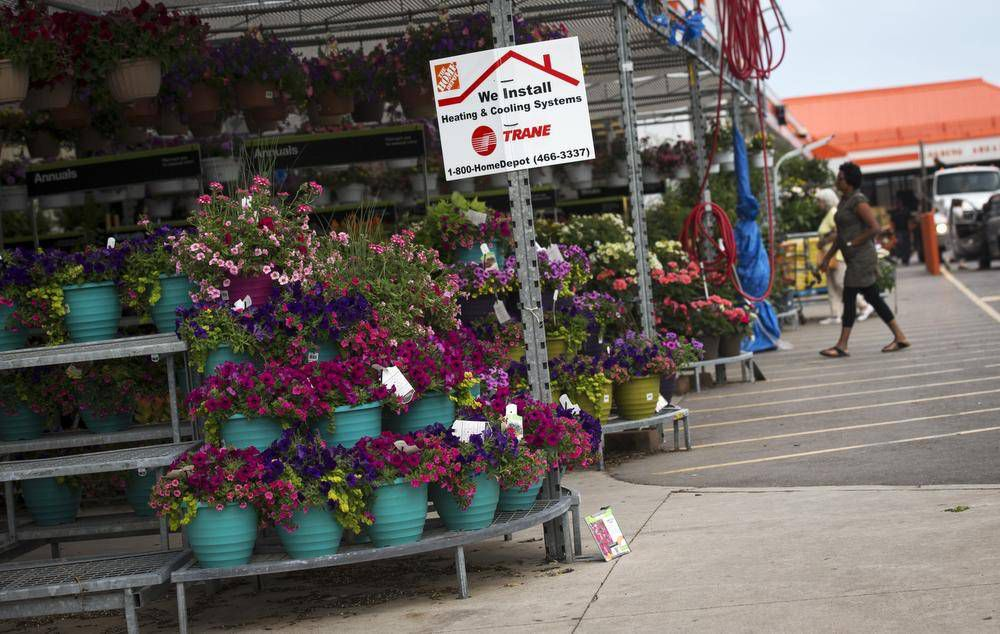 Home Depot raises warning flag on a pesticide tied to bee
