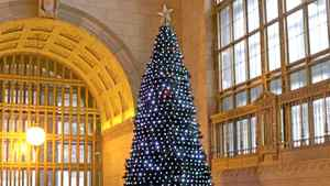 Canadian Tire says its Union Station tree is illuminated by the spirit of Christmas. But it's not quite as simple as that.